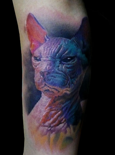 sphynx cat tattoo that lasted me a good 6 hours plus straight,
